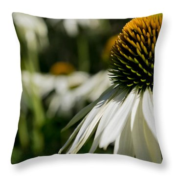Flowers - Echinacea White Swan Throw Pillow