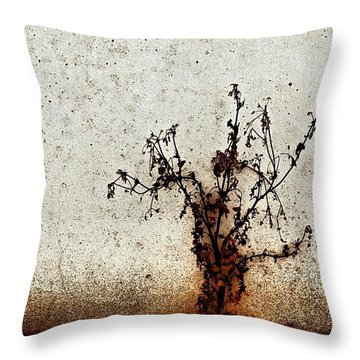 The Brown Plant Throw Pillow by Jason Michael Roust