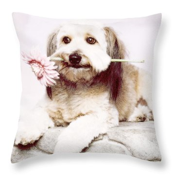 Flowers For My Best Friend. Throw Pillow by VRL Art