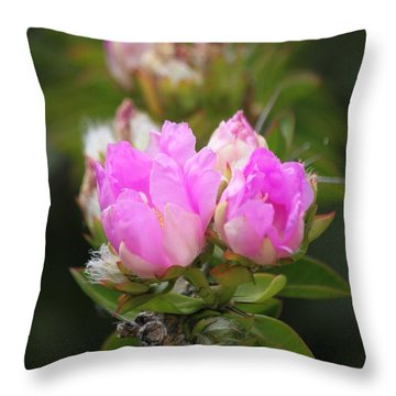 Throw Pillow featuring the photograph Flowers For You by Amy Gallagher