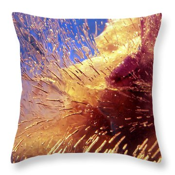 Throw Pillow featuring the photograph Flowers In Ice by Randi Grace Nilsberg