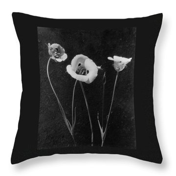 Flowers In Louise Beebe Wilder's Garden Throw Pillow