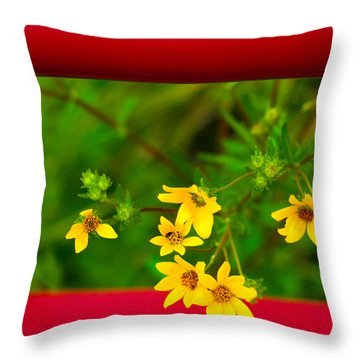 Flowers In Red Fence Throw Pillow by Darryl Dalton