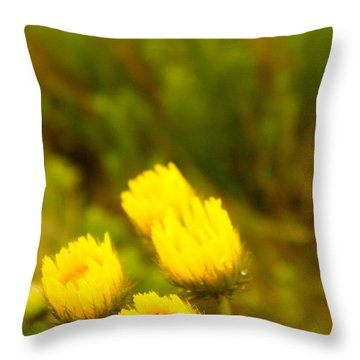 Flowers In The Wild Throw Pillow by Alistair Lyne