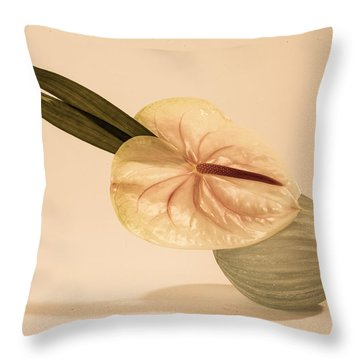 Flowers In Vases 6 Throw Pillow