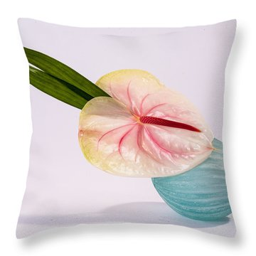 Flowers In Vases 8 Throw Pillow