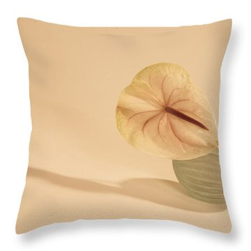 Flowers In Vases1 Throw Pillow
