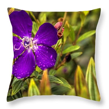 Throw Pillow featuring the photograph Flowers Love Water by Tyson Kinnison