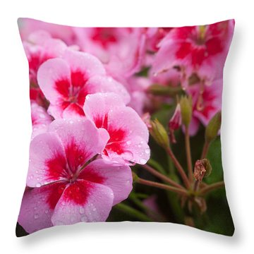 Flowers On A Rainy Sunday Afternoon Throw Pillow