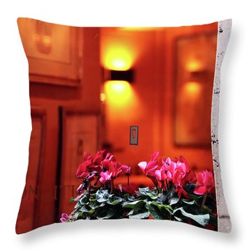 Flowers On The Ledge Throw Pillow by John Rizzuto