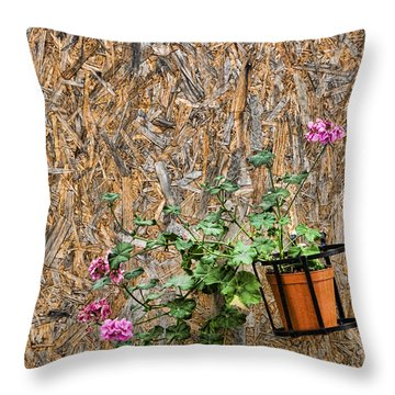 Flowers On Wall - Taromina Throw Pillow by David Smith