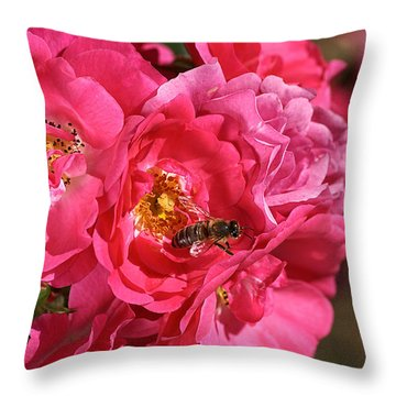 Flowers-roses-pink-bee Throw Pillow by Joy Watson