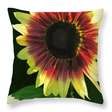 Flowers - Sunflower Ring Of Fire Throw Pillow by Susan Savad