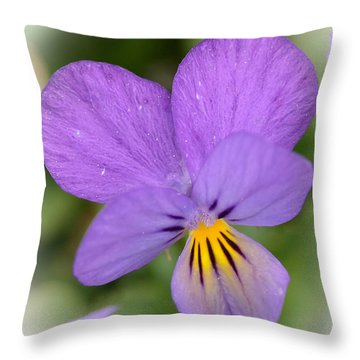 Throw Pillow featuring the photograph Flowers That Smile by Kerri Farley