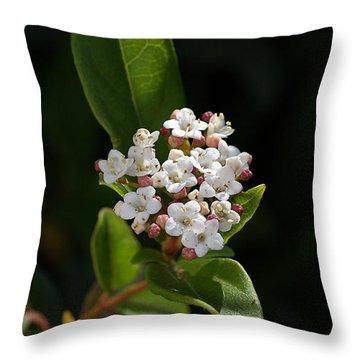 Flowers-tiny White Throw Pillow by Joy Watson