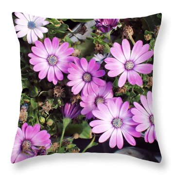 Flowers...silky Pink Throw Pillow by Tom Druin