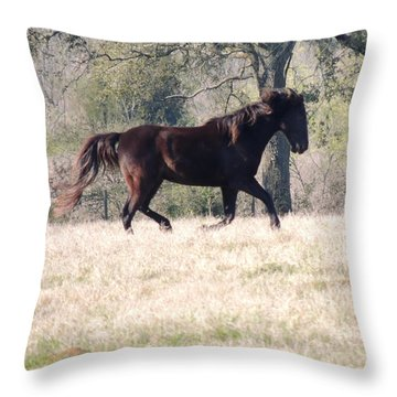 Flowing Beauty Throw Pillow by Kim Pate