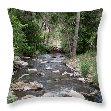 Flowing Down Stream Throw Pillow