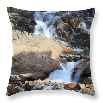 Flowing Downstream Throw Pillow