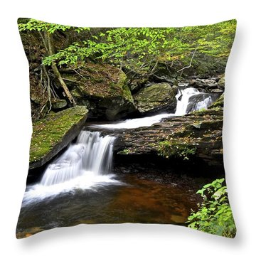 Flowing Falls Throw Pillow by Frozen in Time Fine Art Photography