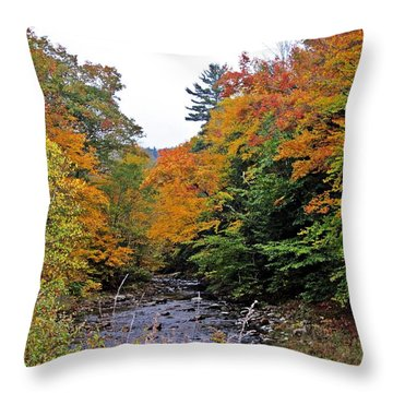 Flowing Into October Throw Pillow by MTBobbins Photography