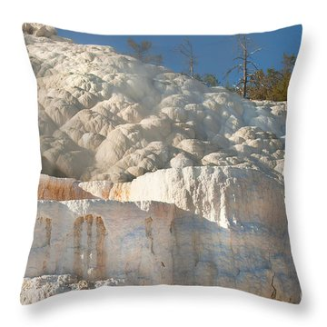 Flowing Minerals Throw Pillow