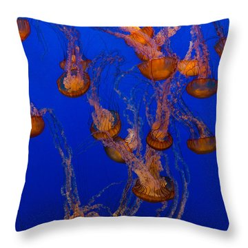 Flowing Pacific Sea Nettles 2 Throw Pillow