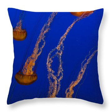 Flowing Pacific Sea Nettles 3 Throw Pillow