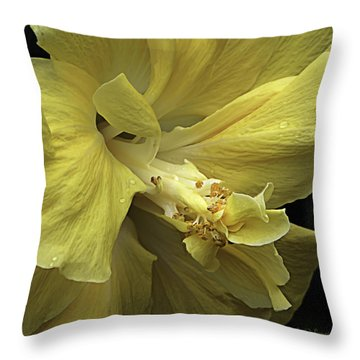 Flowing Petals Of The Chinese Hibiscus Throw Pillow