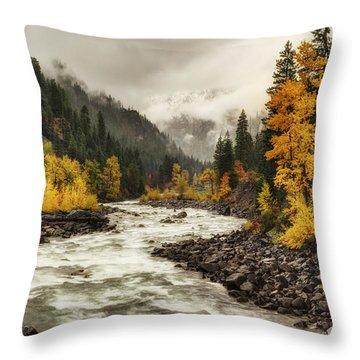 Flowing Through Autumn Throw Pillow