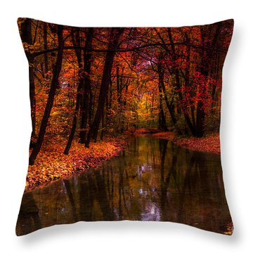 Flowing Through The Colors Of Fall Throw Pillow