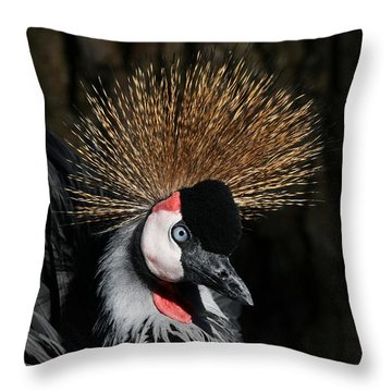 Fluffy Throw Pillow by Judy Whitton