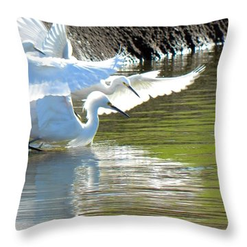 Throw Pillow featuring the photograph Flurry by Deb Halloran