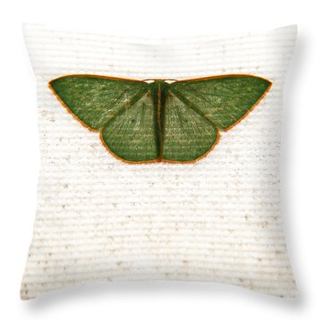 Flutter Throw Pillow