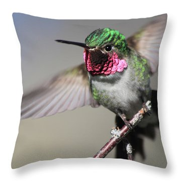 Fluttering Throw Pillow