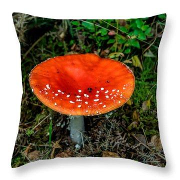 Fly Agaric Fungi Throw Pillow by Adrian Evans