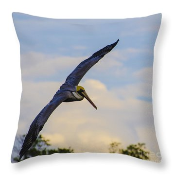 Fly Away Throw Pillow by Judy Wolinsky