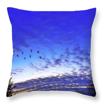 Fly By At Sunset Throw Pillow