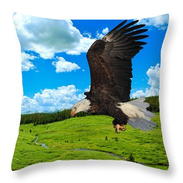 Fly By Throw Pillow
