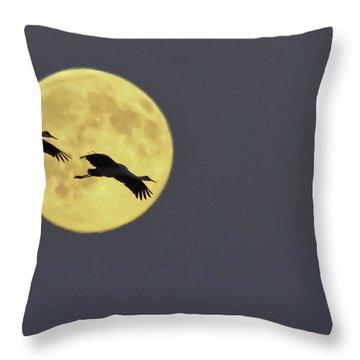 Moonlight Flight Throw Pillow