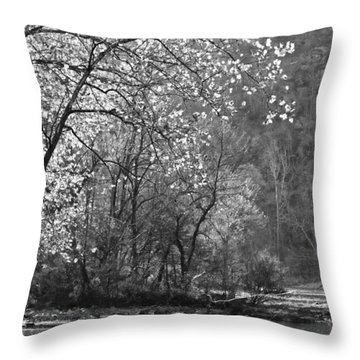 Throw Pillow featuring the photograph Fly Fisherwoman Bw by Denise Romano