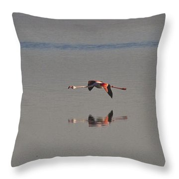 Fly Fly Away My Pretty Flamingo Throw Pillow by Heiko Koehrer-Wagner