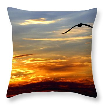 Throw Pillow featuring the photograph Fly Free by Faith Williams