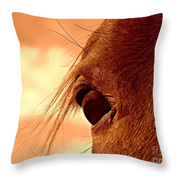 Fly In The Eye Throw Pillow