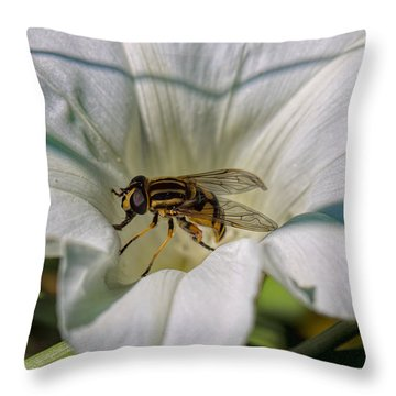 Throw Pillow featuring the photograph Fly In White Flower by Leif Sohlman