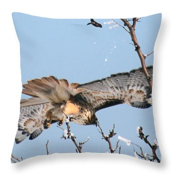 Flyby Throw Pillow by Bob Hislop