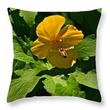 Flying Bee And Wood Poppy Throw Pillow by Byron Varvarigos