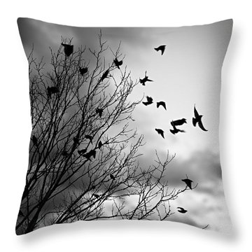 Flying Birds Throw Pillow by Elena Elisseeva