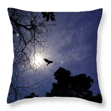 Flying By The Moon Throw Pillow