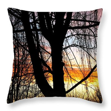 Flying Colors II Throw Pillow